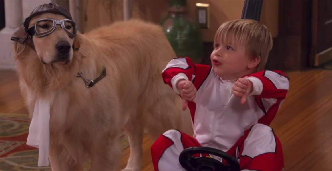 Dog Cosmo on Fuller House died following surgery